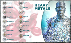heavy metal toxicity