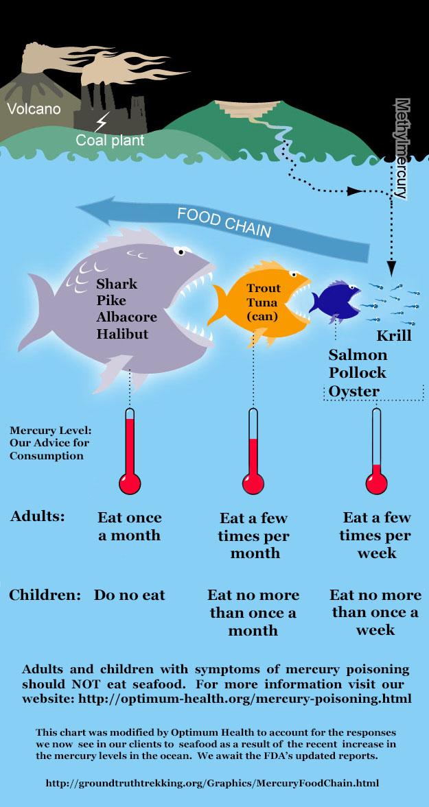 mercury in fish – edited by optimum health 2