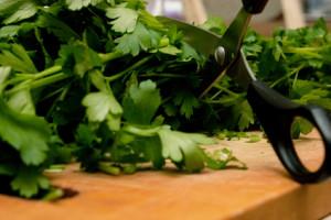 Scissors Cutting Food